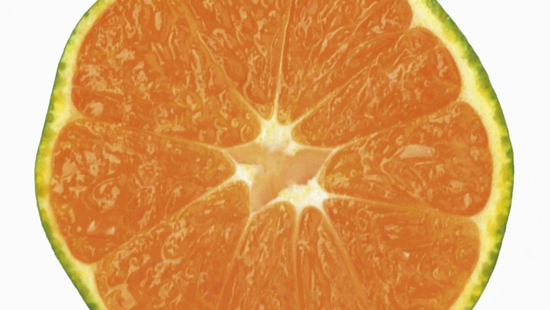 הידרוקולוניק – טיפול שטיפת מעי עמוקה